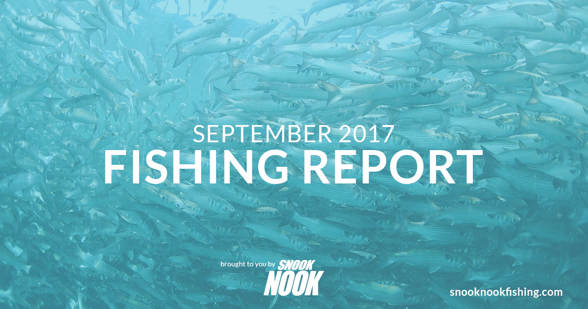 Fishing Report – September 2017 – Stuart, FL