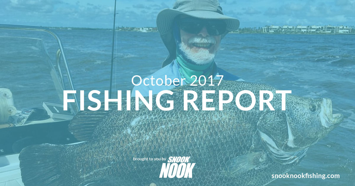 Fishing Report – October 2017 – Stuart, FL