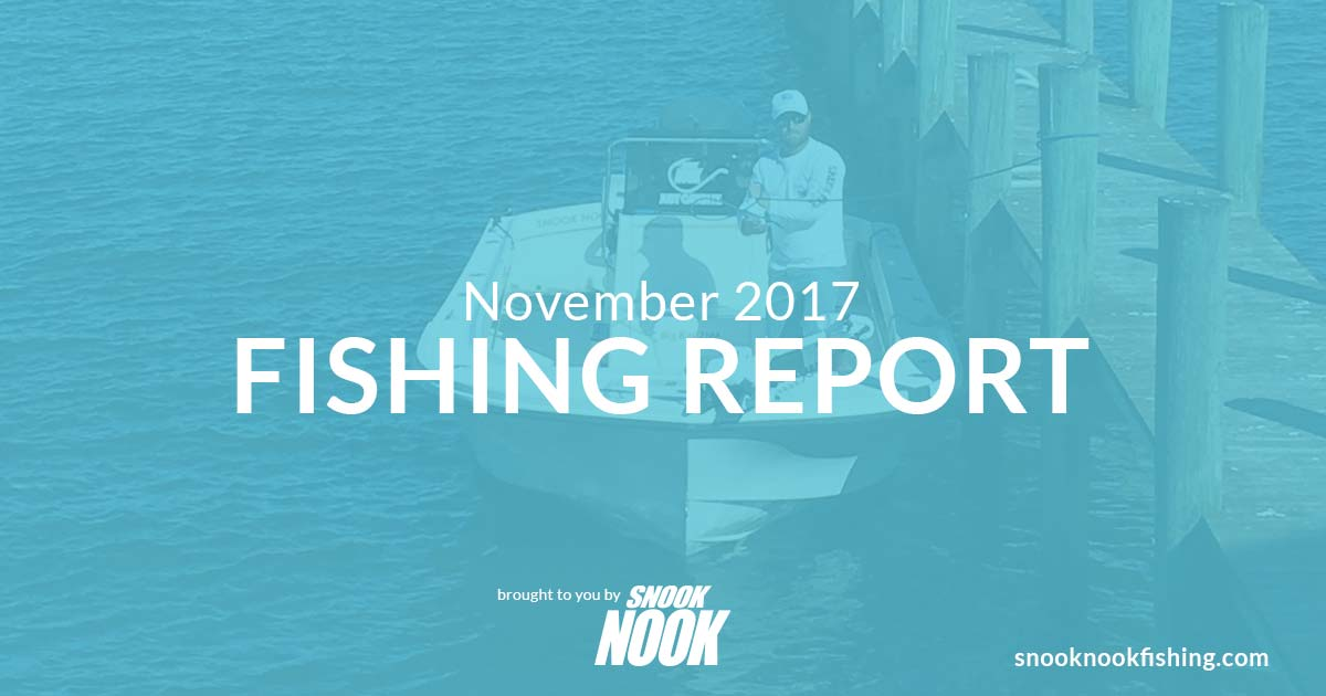 Fishing Report – November 2017 – Stuart, FL