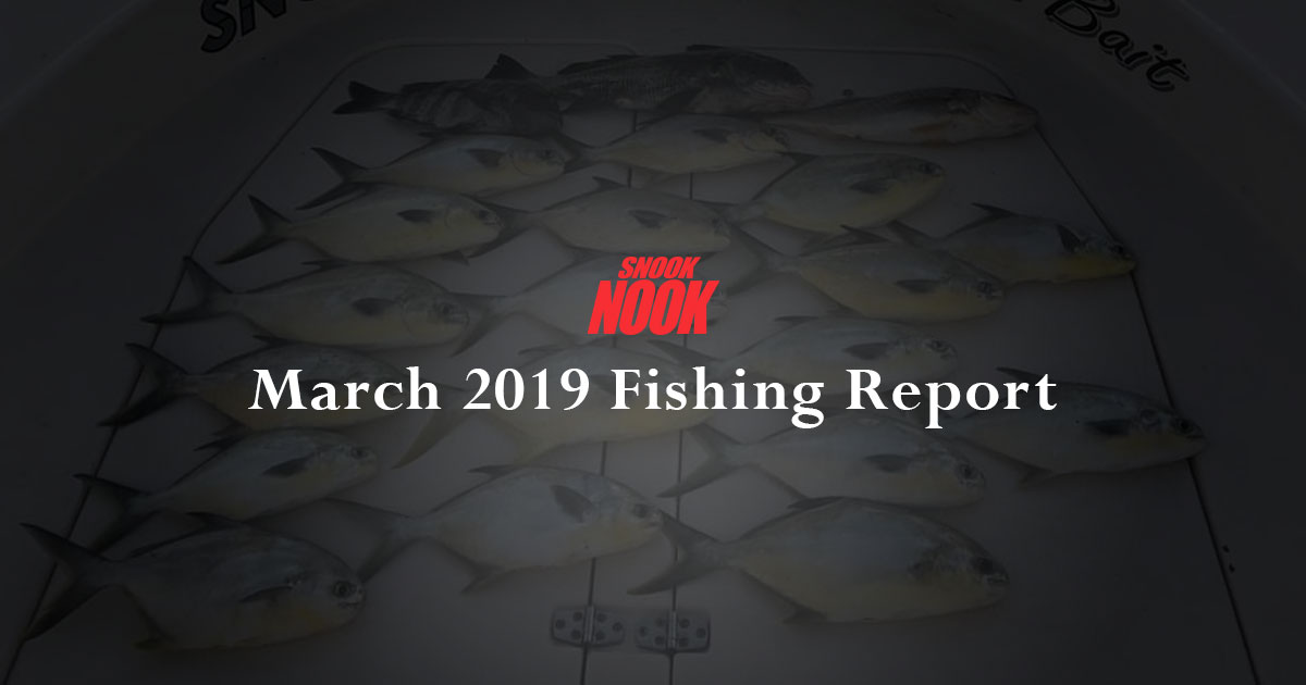 Snook Nook Fishing Report March 2019